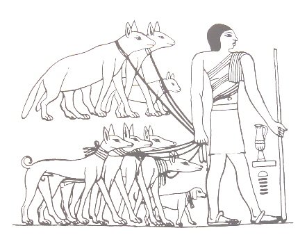 Four tesem dogs (an Egyptian breed believed to be the progenitor of all sighthounds), and a beagle like dog, all in the bottom row, as well as 3 hyenas in the upper row, led on leashes by a man in ancient Egypt.