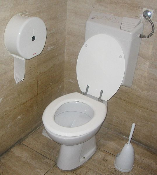 A toilet with a flush water tank. Photo taken on October 5, 2006 by Jarlhelm.