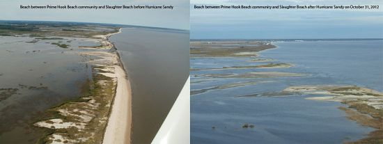 Prime Hook National Wildlife Refuge (Delaware) experienced extensive flooding during Hurricane Sandy. This photo shows a before and after of the beach between the Prime Hook Beach community and Slaughter Beach, 2 November 2012. Credit: US Fish and Wildlife Service.