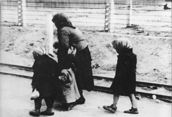 Hungarian Jewish children and an elderly woman on the way to the gas chambers of Auschwitz-Birkenau (1944). Many of the very young and very old were murdered immediately upon arrival and were never registered. (Wikipedia's caption in http://en.wikipedia.org/wiki/Auschwitz). Photographed by Bernhard Walter, May 1944. Attribution: Bundesarchiv, Bild 183-74237-004 / CC-BY-SA .