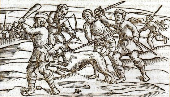 "A woodcut showing a rabid dog in the Middle Ages. ""Middle Ages rabid dog"" by Unknown - Scanned from Dobson, Mary J. (2008) Disease, Englewood Cliffs, N.J: Quercus, p. 157 ISBN: 1-84724-399-1.. Licensed under Public domain via Wikimedia Commons - http://commons.wikimedia.org/wiki/File:Middle_Ages_rabid_dog.jpg#mediaviewer/File:Middle_Ages_rabid_dog.jpg"